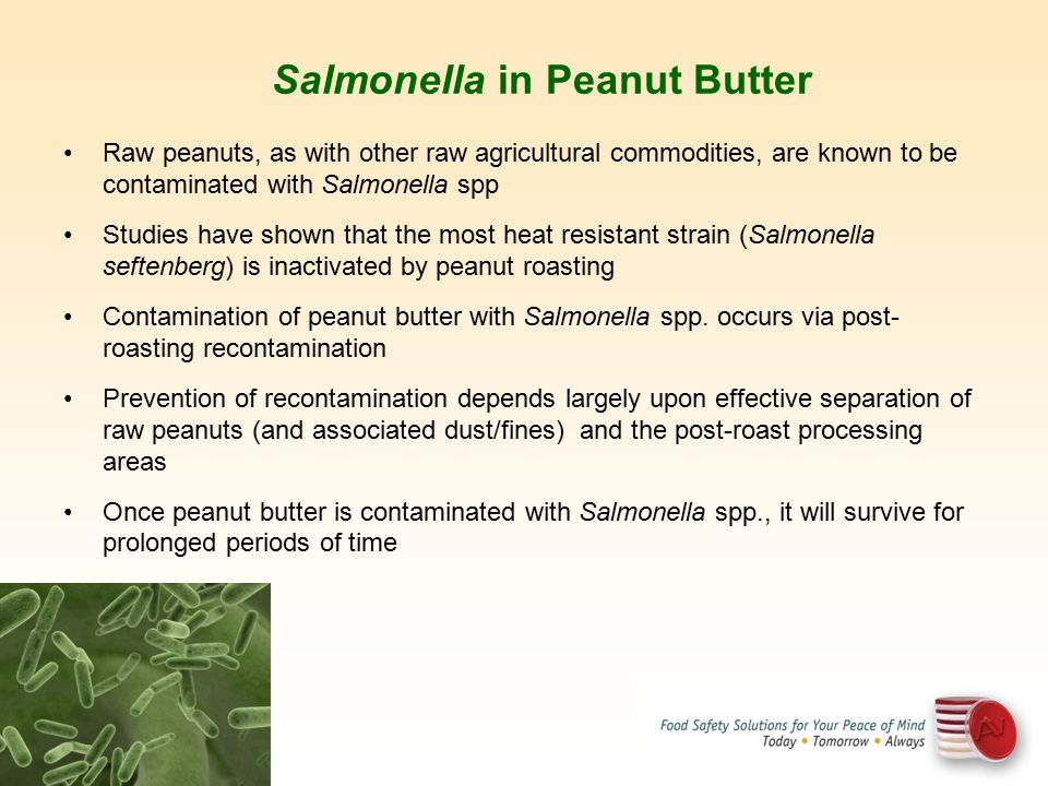 Salmonella in Peanut Butter