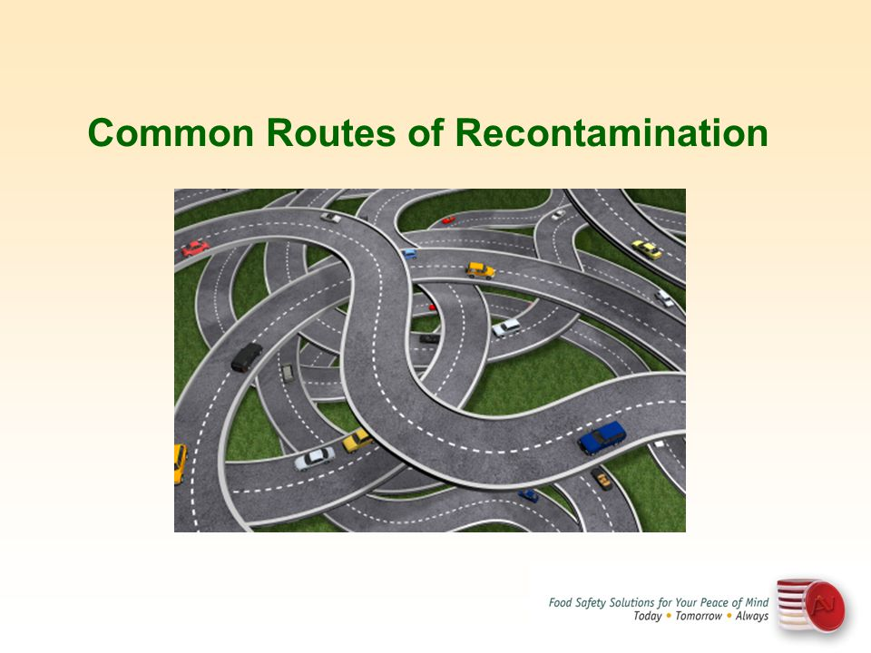 Common Routes of Recontamination