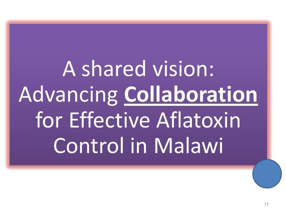 A shared vision: Advancing Collaboration for Effective Aflatoxin Control in Malawi