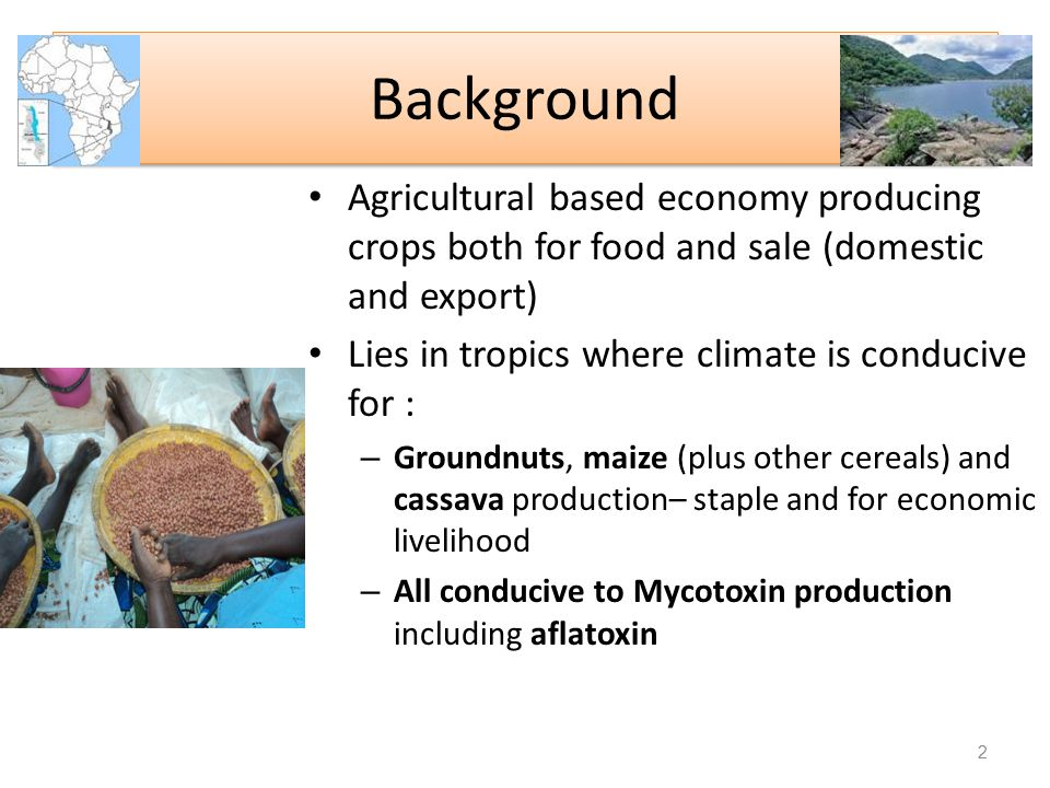 Background Agricultural based economy producing crops both for food and sale (domestic and export) Lies in tropics where climate is conducive for :