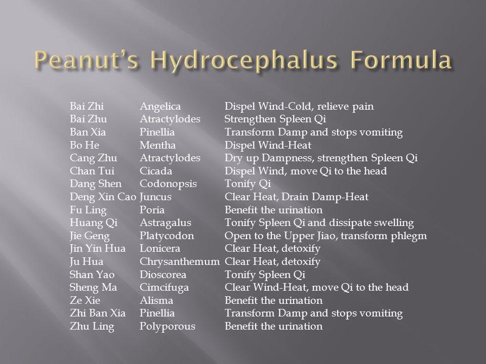 Peanut's Hydrocephalus Formula