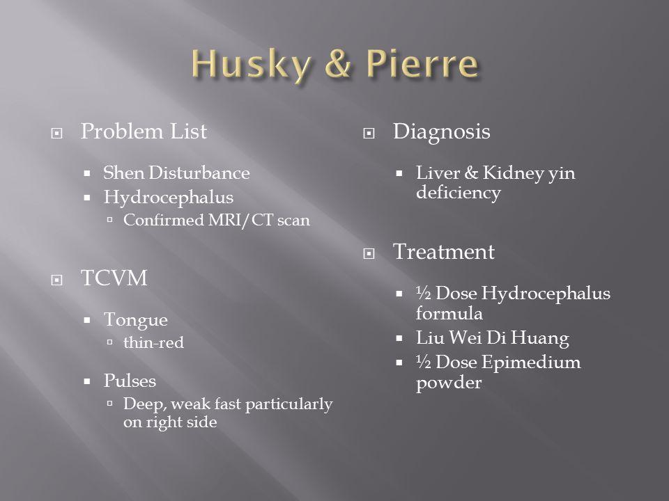 Husky & Pierre Problem List TCVM Diagnosis Treatment Shen Disturbance