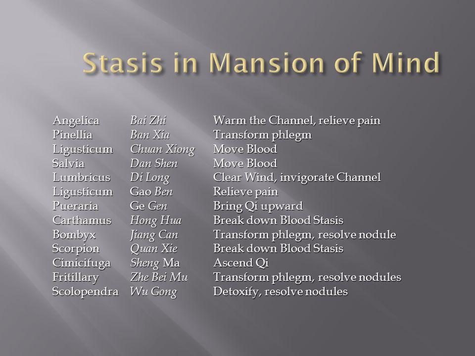Stasis in Mansion of Mind