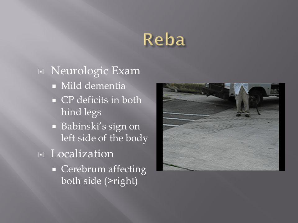 Reba Neurologic Exam Localization Mild dementia