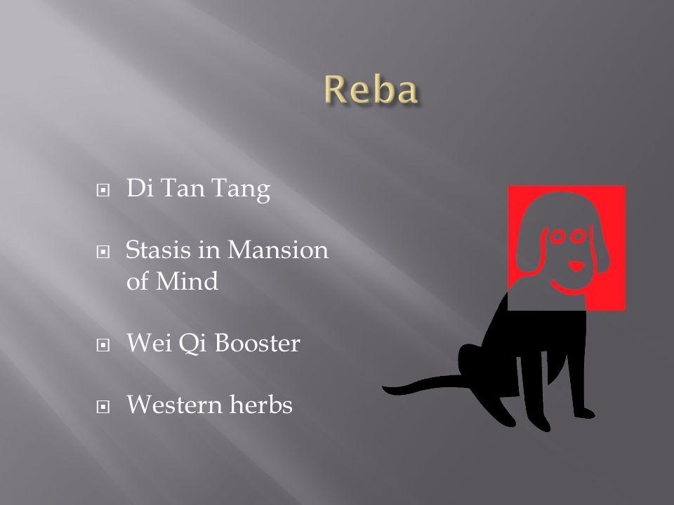 Reba Di Tan Tang Stasis in Mansion of Mind Wei Qi Booster