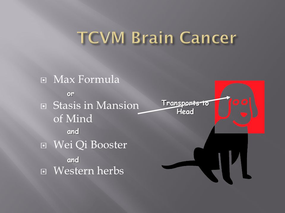 TCVM Brain Cancer Max Formula Stasis in Mansion of Mind Wei Qi Booster