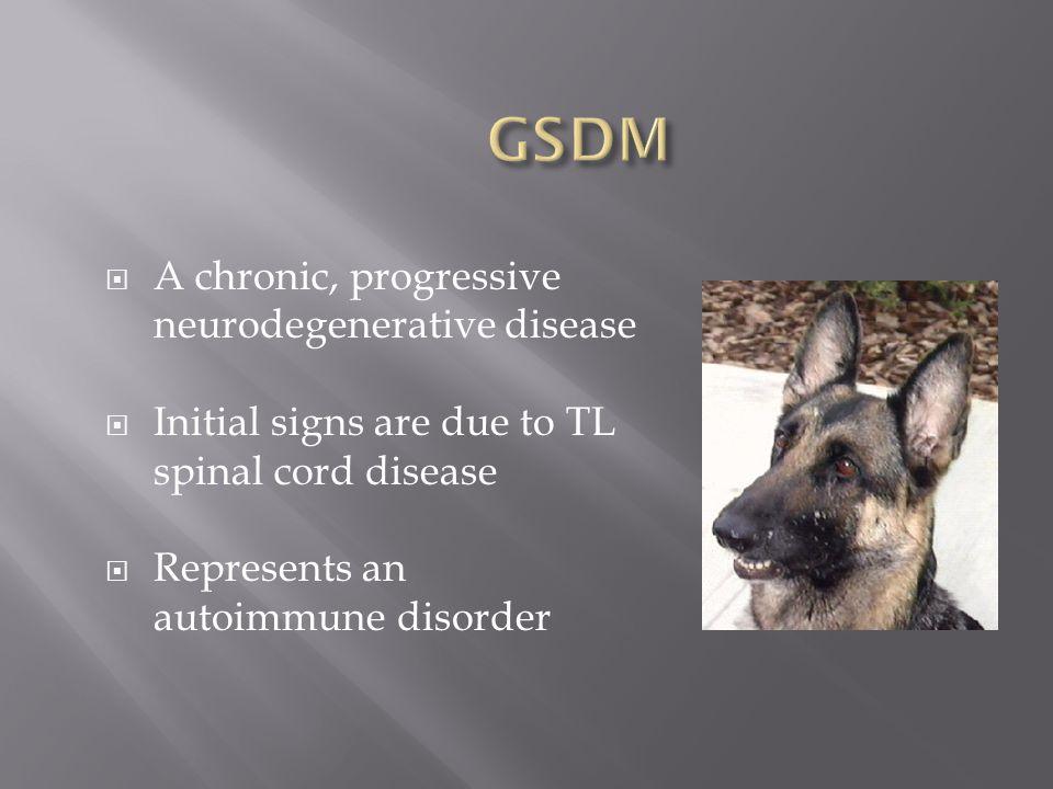 GSDM A chronic, progressive neurodegenerative disease