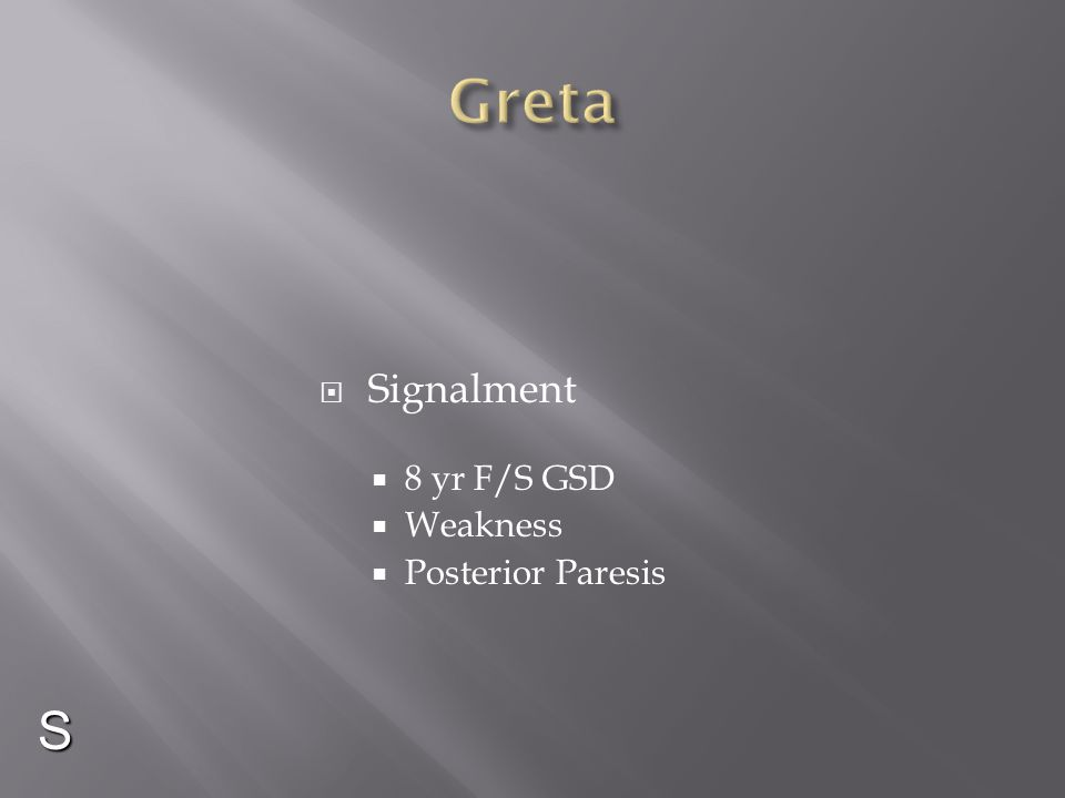 Greta Signalment 8 yr F/S GSD Weakness Posterior Paresis S