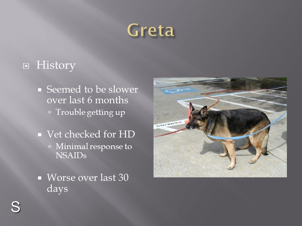 Greta S History Seemed to be slower over last 6 months