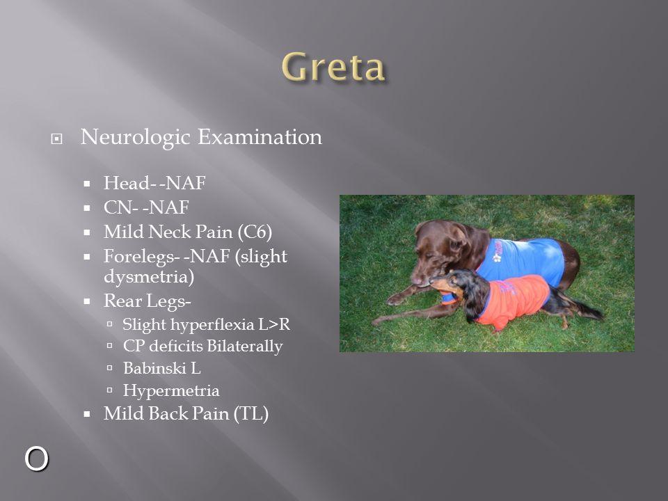 Greta O Neurologic Examination Head- -NAF CN- -NAF Mild Neck Pain (C6)