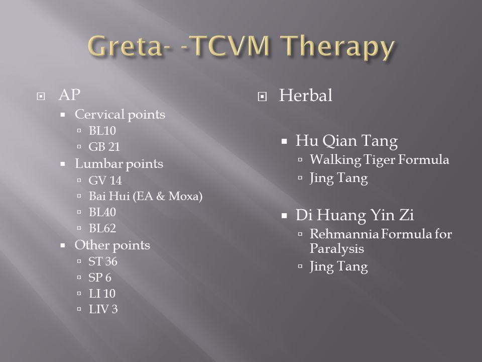 Greta- -TCVM Therapy Herbal AP Hu Qian Tang Di Huang Yin Zi