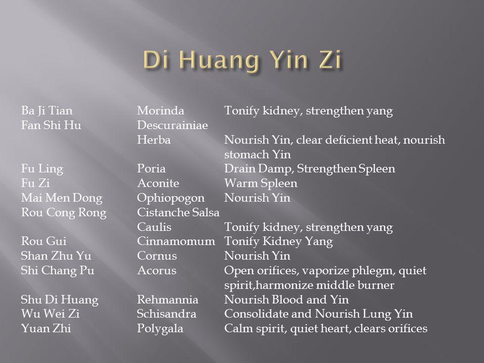 Di Huang Yin Zi Ba Ji Tian Morinda Tonify kidney, strengthen yang