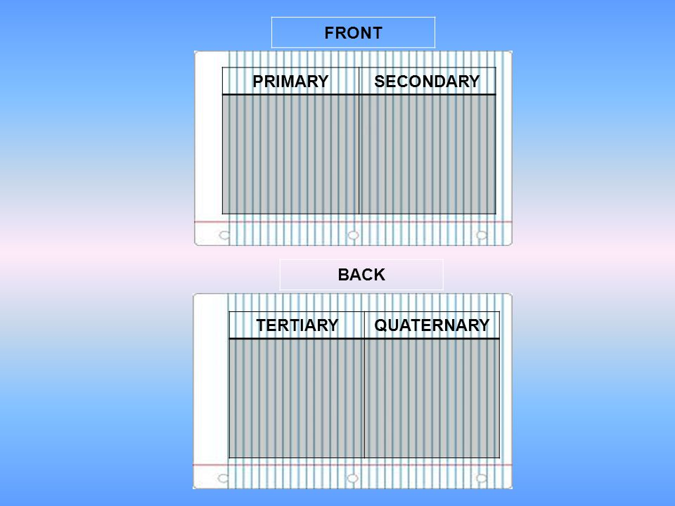 FRONT PRIMARY SECONDARY BACK TERTIARY QUATERNARY