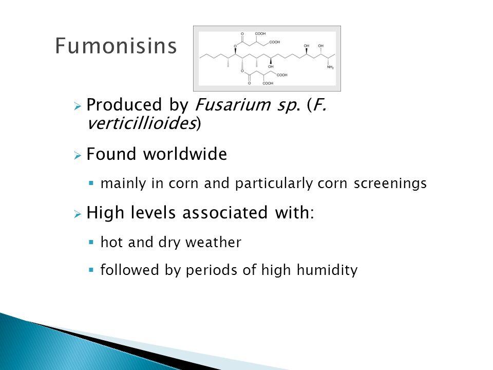 Fumonisins Produced by Fusarium sp. (F. verticillioides)