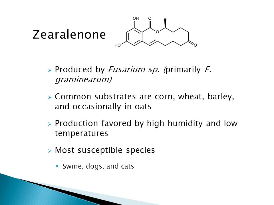 Zearalenone Produced by Fusarium sp. (primarily F. graminearum)