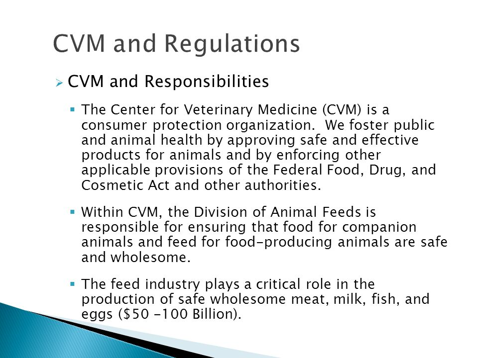 CVM and Regulations CVM and Responsibilities