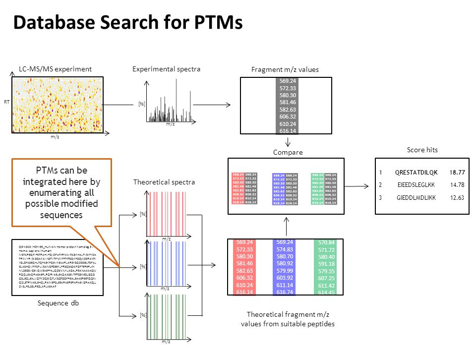 Database Search for PTMs