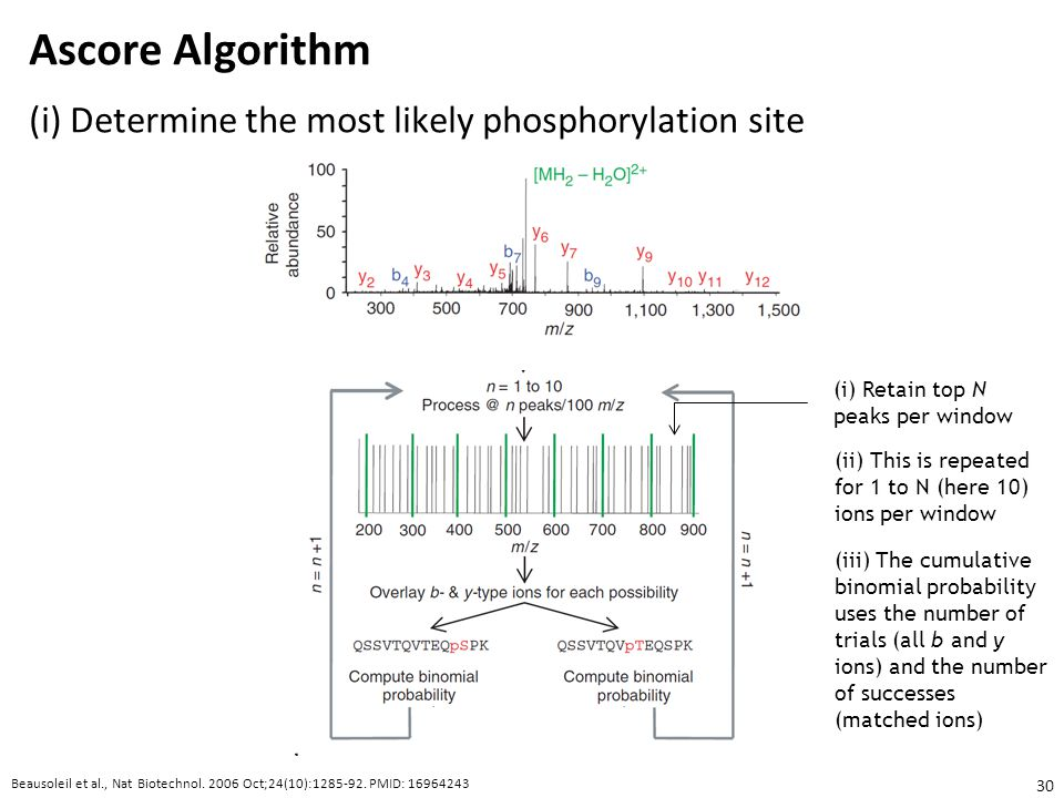 Ascore Algorithm (i) Determine the most likely phosphorylation site
