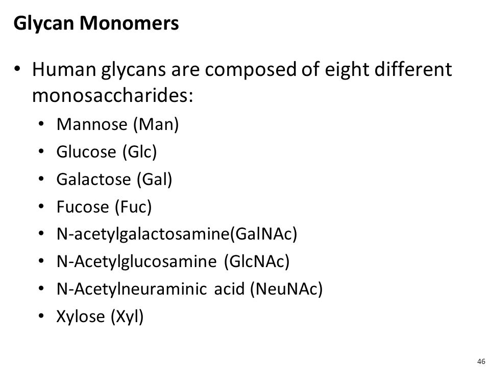 Human glycans are composed of eight different monosaccharides: