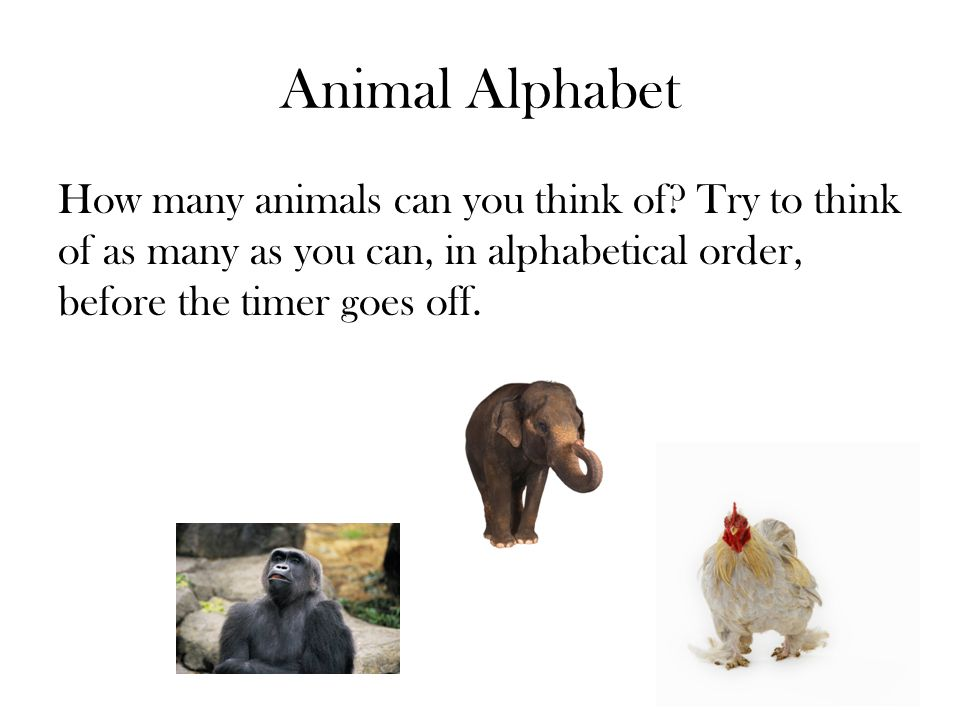 Animal Alphabet How many animals can you think of.