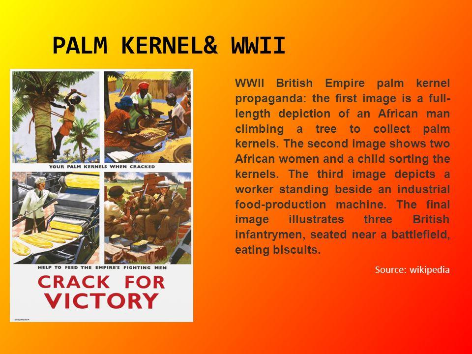PALM KERNEL& WWII