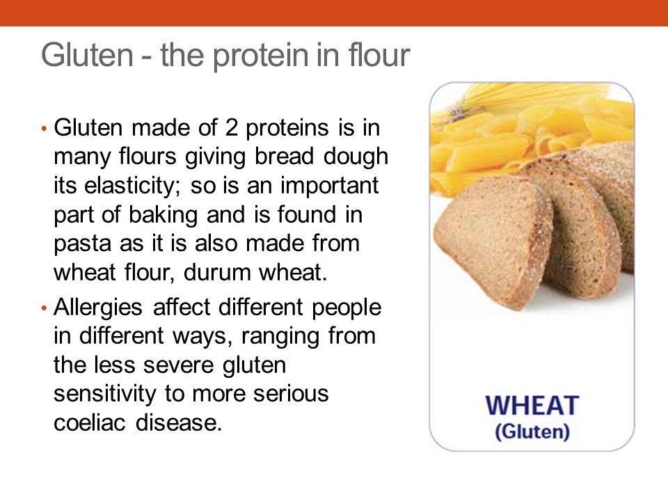 Gluten - the protein in flour