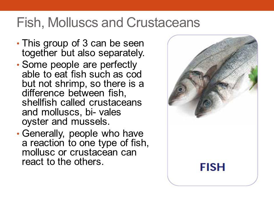 Fish, Molluscs and Crustaceans