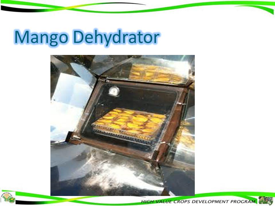 Mango Dehydrator 10