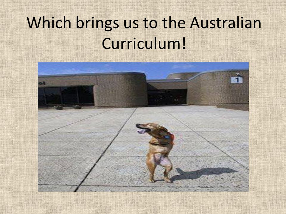 Which brings us to the Australian Curriculum!