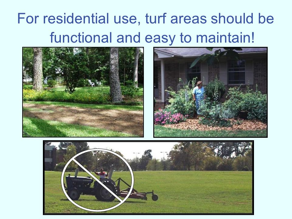 For residential use, turf areas should be functional and easy to maintain!