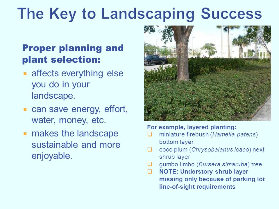 The Key to Landscaping Success