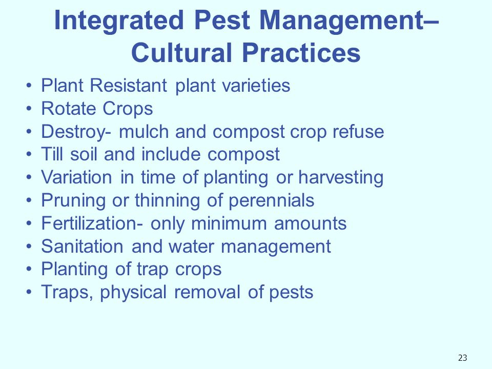 Integrated Pest Management– Cultural Practices