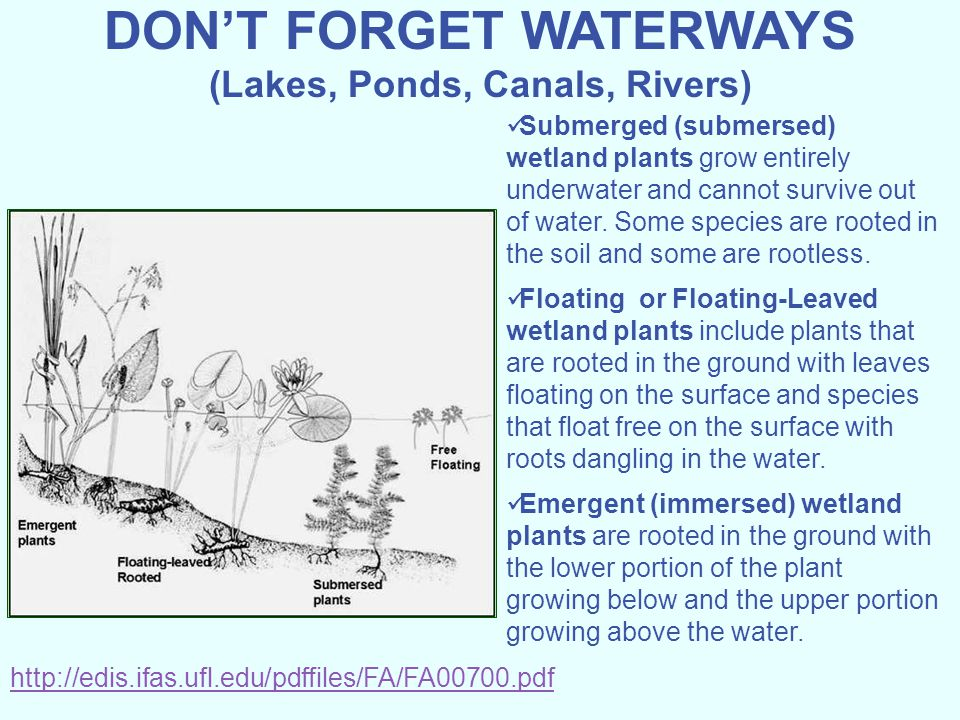 DON'T FORGET WATERWAYS (Lakes, Ponds, Canals, Rivers)