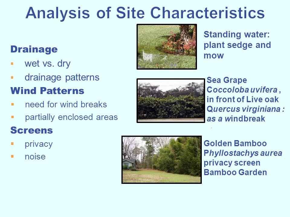 Analysis of Site Characteristics