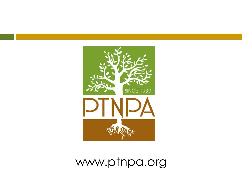 www.ptnpa.org