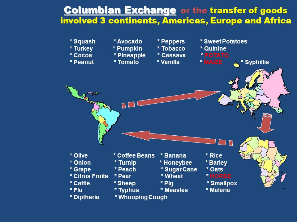 Columbian Exchange or the transfer of goods involved 3 continents, Americas, Europe and Africa