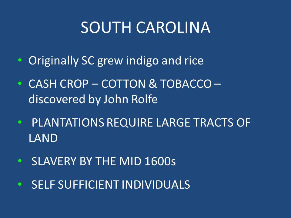 SOUTH CAROLINA Originally SC grew indigo and rice