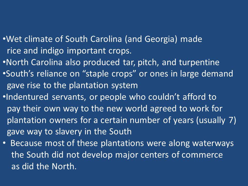 Wet climate of South Carolina (and Georgia) made