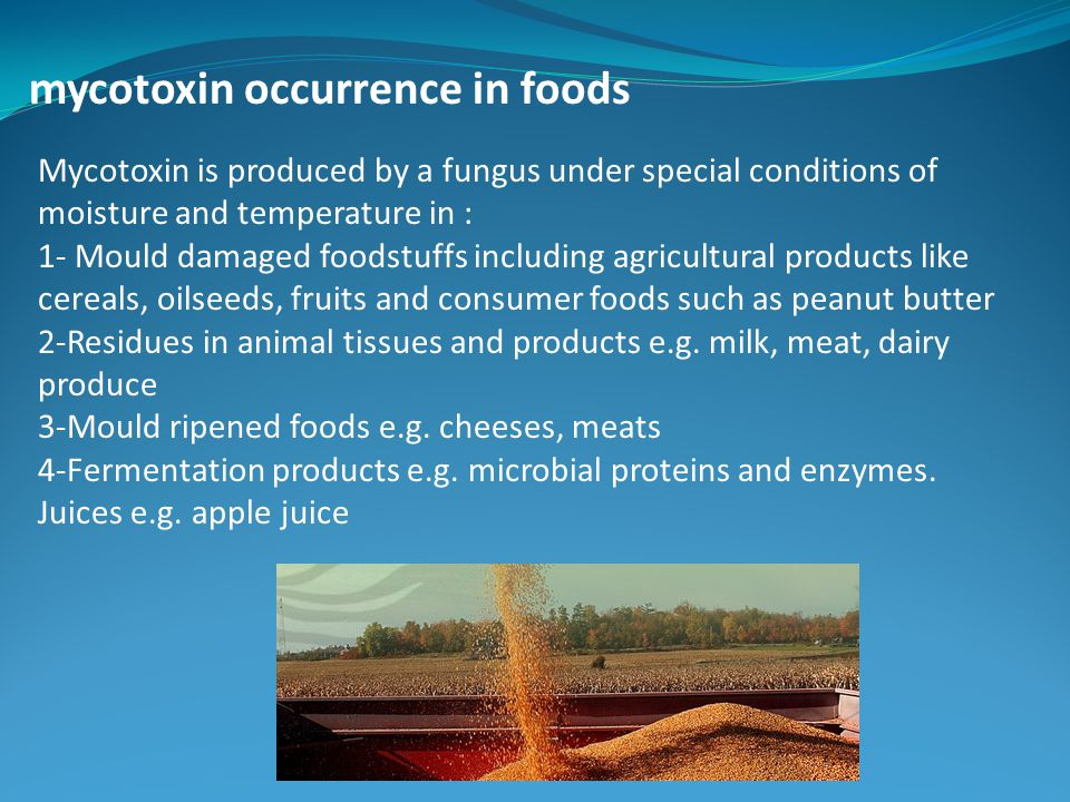 mycotoxin occurrence in foods