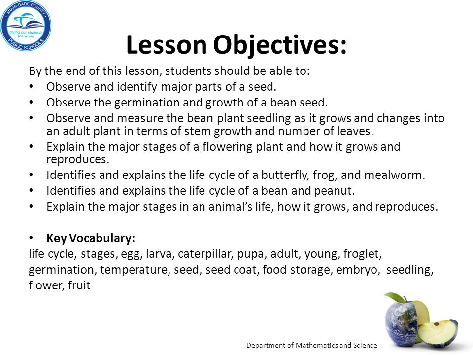 Lesson Objectives: By the end of this lesson, students should be able to: Observe and identify major parts of a seed.