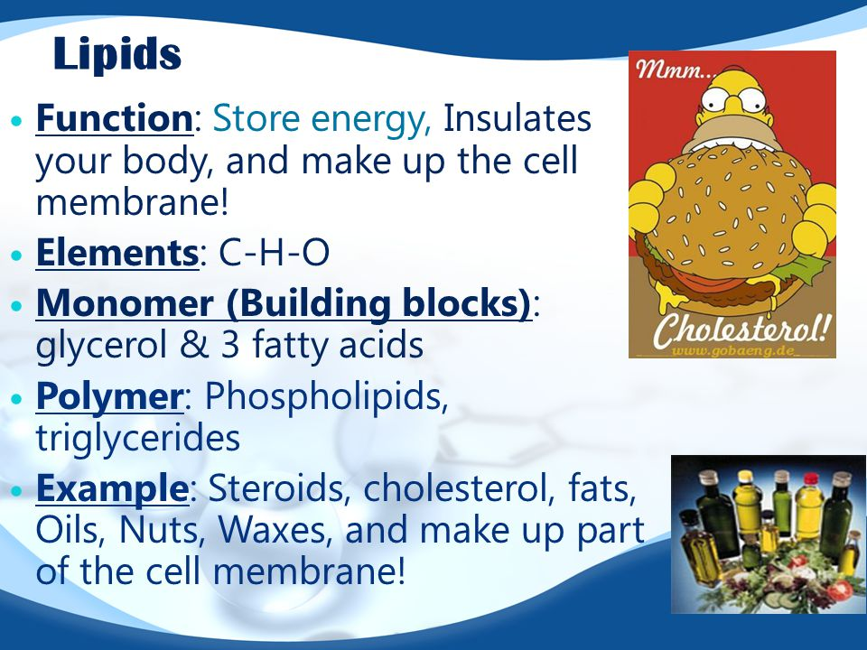 Lipids Function: Store energy, Insulates your body, and make up the cell membrane! Elements: C-H-O.