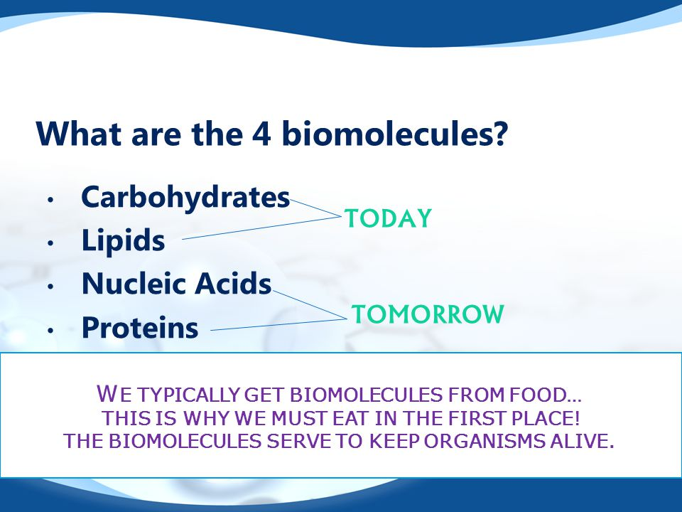 What are the 4 biomolecules