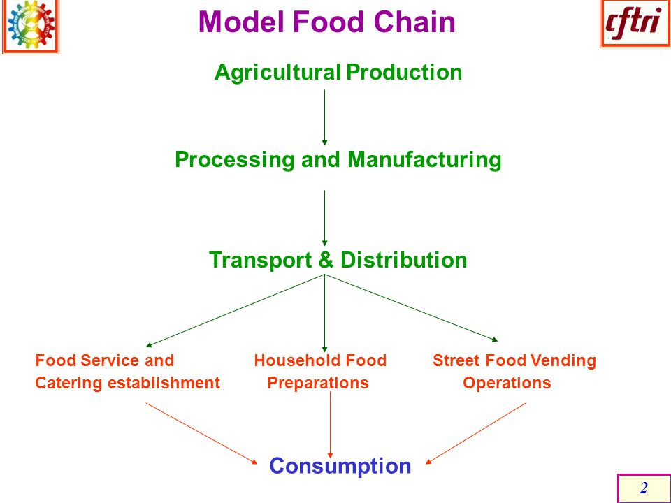 Model Food Chain Agricultural Production Processing and Manufacturing