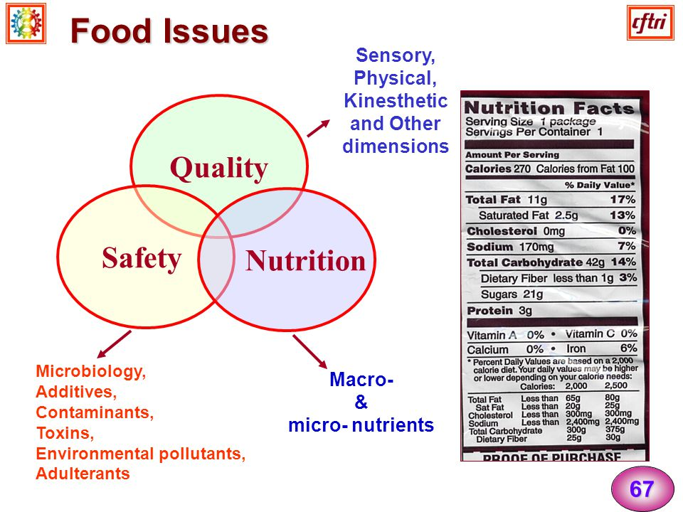 Food Issues Quality Safety Nutrition 67