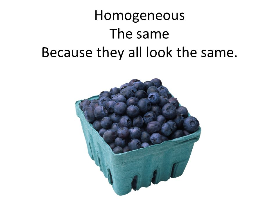 Homogeneous The same Because they all look the same.