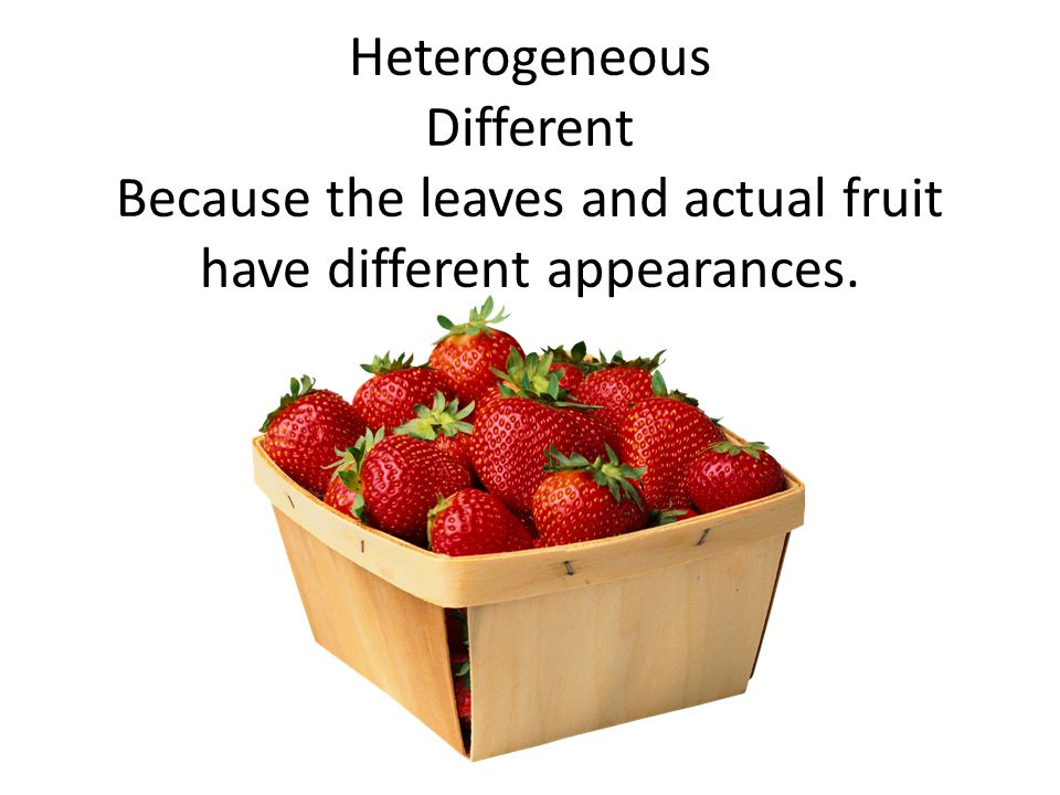 Heterogeneous Different Because the leaves and actual fruit have different appearances.