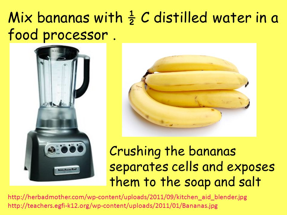 Mix bananas with ½ C distilled water in a food processor .