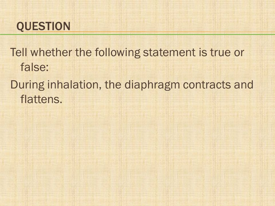 Question Tell whether the following statement is true or false: During inhalation, the diaphragm contracts and flattens.