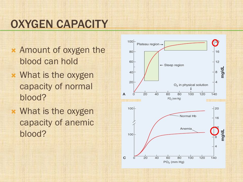 Oxygen Capacity Amount of oxygen the blood can hold