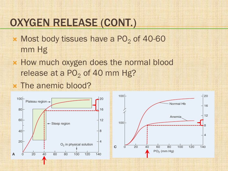 Oxygen Release (cont.) Most body tissues have a PO2 of 40-60 mm Hg